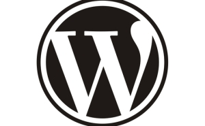 wordpress-logo-540x334