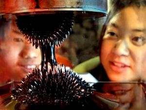 ferrofluid-ferroakiskan-sivi